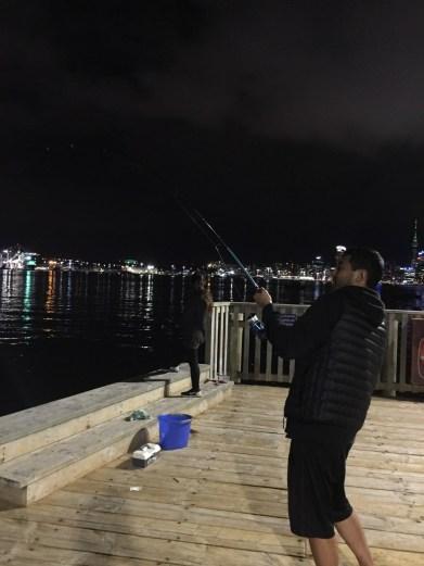 Ferry Terminal - Stanley Bay