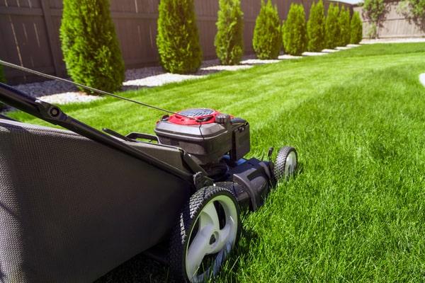 lawn-mower-PVT2RZH(1)-min