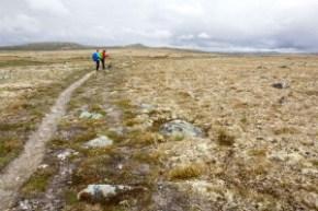 Tagestour auf der Hardangervidda – von Trondsbu nach Stigstuv und auf anderem Weg zurück