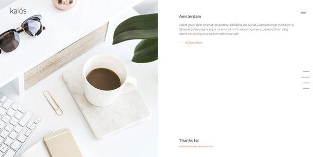 simple Portfolio WordPress Themes