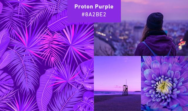 Purple Fastest growing colors in 2019