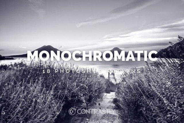 Monochromatic Best Black & White Photoshop Actions