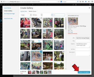 Click Create a new gallery - Inserting a thumbnail gallery -  Webhive - Web Design Batemans Bay, Moruya, Narooma, Tilba, Cobargo, Bega