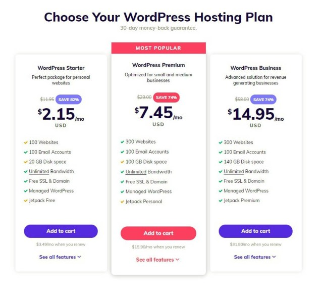WordPress Hosting Plan