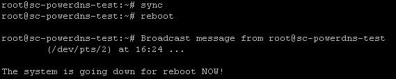 004-sync-reboot