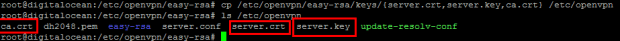 copy-server-cert