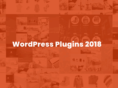In 2018, Work With These Great WordPress Plugins to Get Better Results