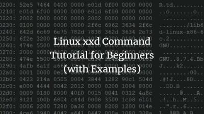 Linux xxd Command Tutorial for Beginners (with Examples)