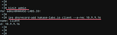Add a DNS record