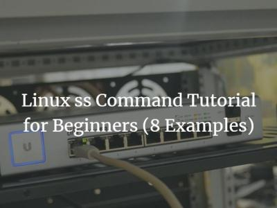 Linux ss Command Tutorial for Beginners (8 Examples)