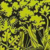 kerivulapicta-tropenwoud woongebied