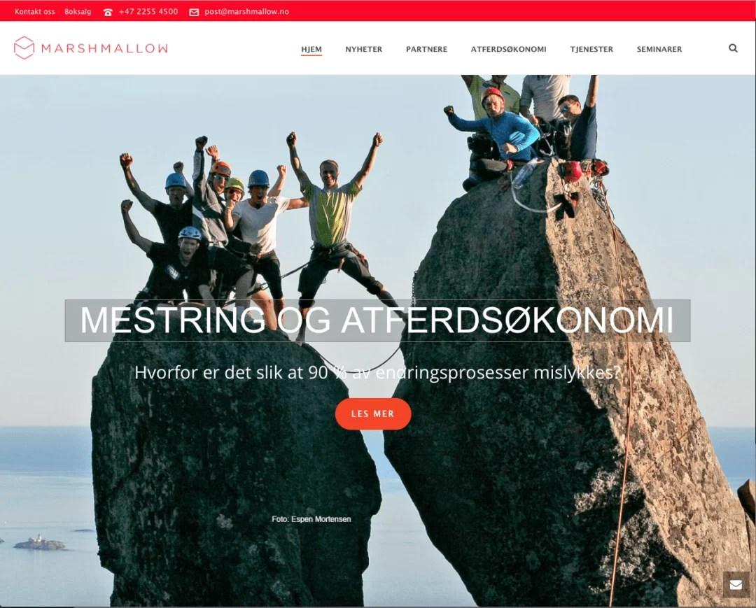 Utvikling av nettside for Marshmallow Group AS