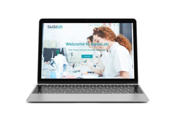 Budalab – web design