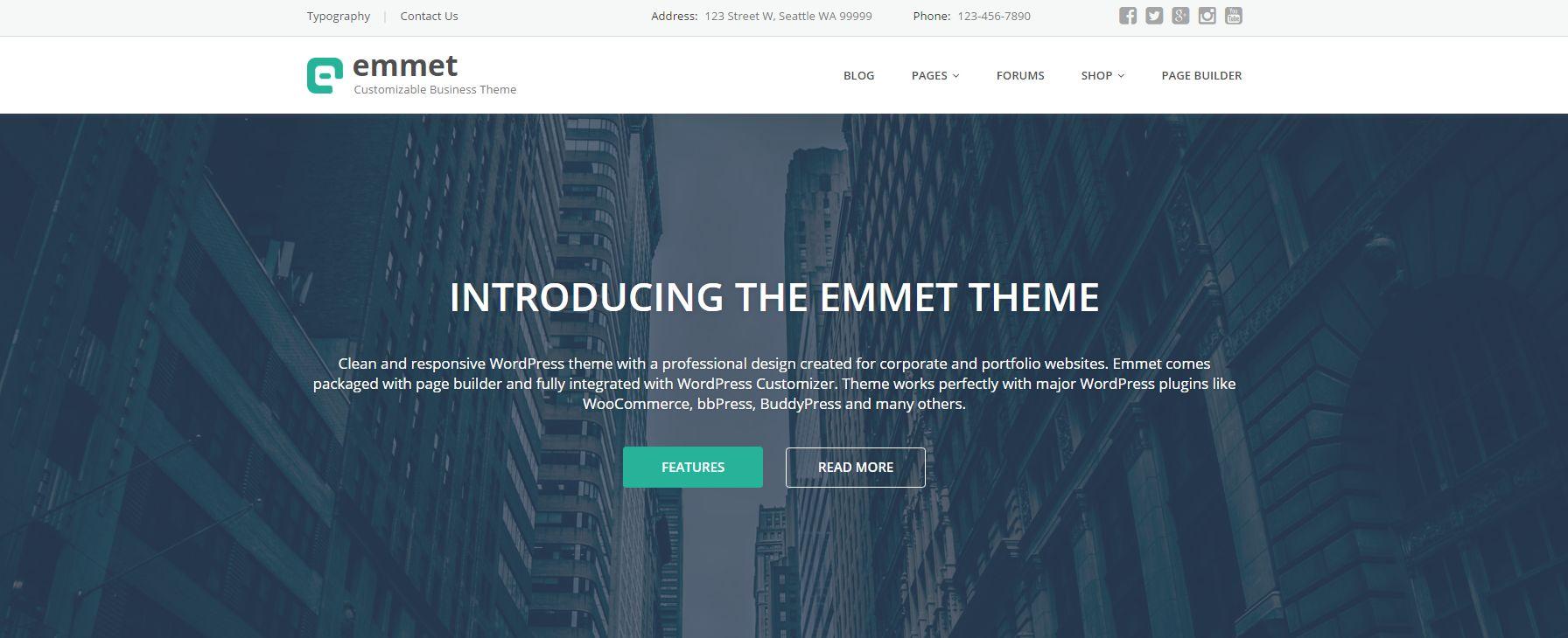 Emmet - Business Responsive WordPress Theme