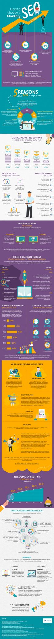 How to Choose Your Monthly SEO Package infographic image