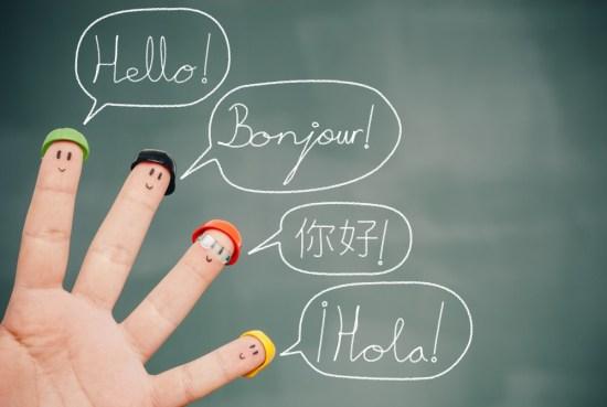 multilingual-support-theme-plugins-weblizar