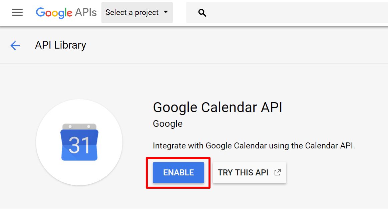enable google api button