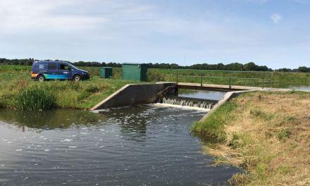 Update droogte: Grondwaterstanden blijven laag, voorlopig voldoende wateraanvoer vanuit IJssel, Vecht en IJsselmeer
