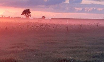 Bijzondere zonsondergang met mist