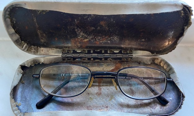 Bril met brillendoos gevonden op Geezenland
