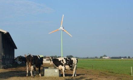 Vergunningsaanvragen kleine windmolens kunnen worden ingediend
