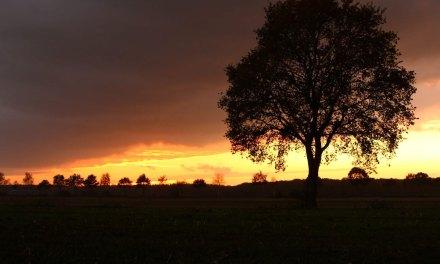 Sunset IJhorst