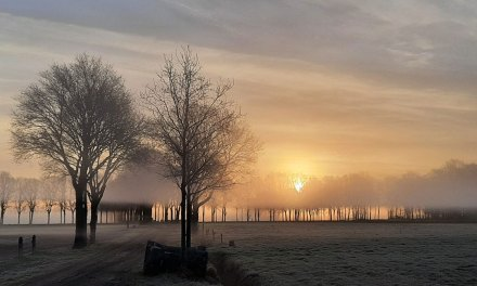 Prachtige zonsopgang in De Lommert