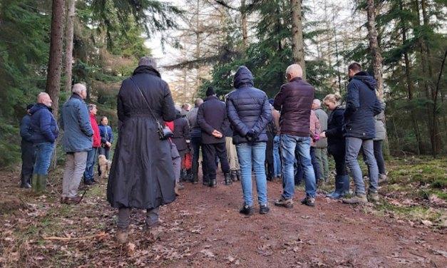 Wandeling 'Het eetbare bos'