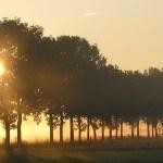 Alzheimer trefpunt Staphorst: Samen dwalen geeft richting