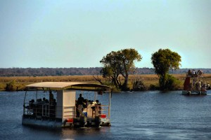 Game drive on Chove River