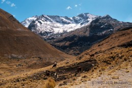 The Takesi Trail - Bolivia
