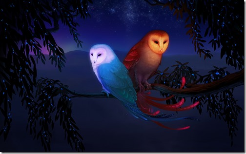 1683x1050_3000_The_Sun_and_The_Moon_2d_fantasy_moon_sun_night_owl_picture_image_digital_art