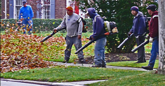 5 guys with leaf blowers