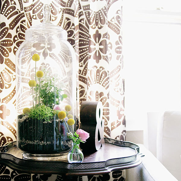 making-it-lovely-mothers-day-terrarium-diy-project-west-elm-nicole-balch