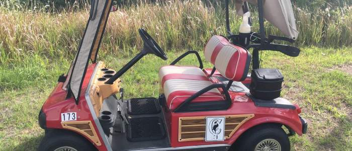 ds woodie red 700x300 - Sold Cart Gallery
