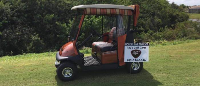events caht hole in one sponsor 700x300 - Sold Cart Gallery
