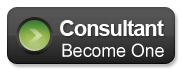Become a web marketing for profit consultant