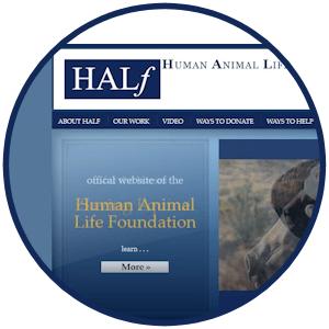 circle humananimallife.org