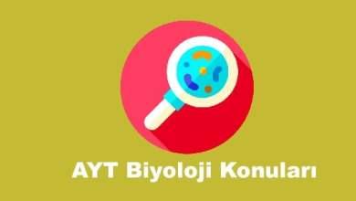 Photo of AYT Biyoloji Konuları ve Soru Dağılımları