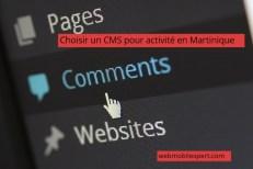 choisir un cms pour activité en Martinique