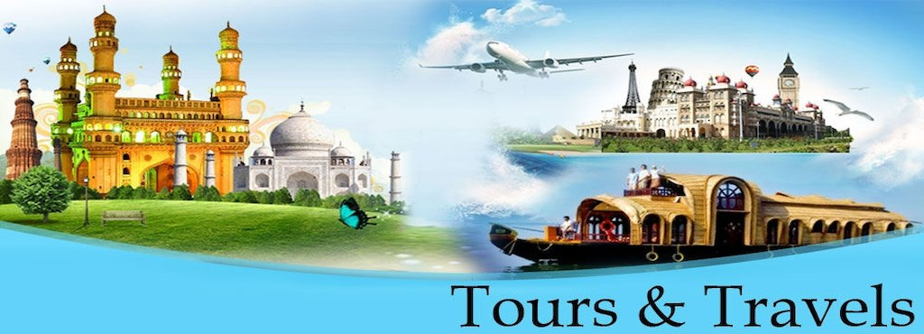 tours and travels website development delhi