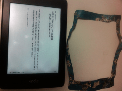 kindle-skinseal-04