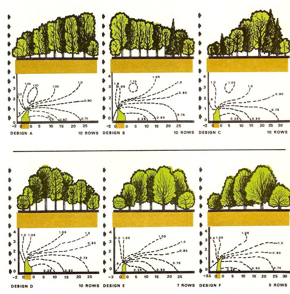 Graphic Tree Diagram Home Webpages Uidaho Edu