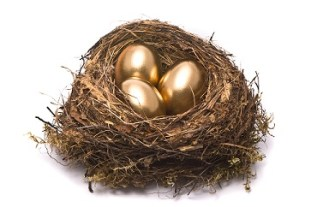 Turn your webpage into the gold egg
