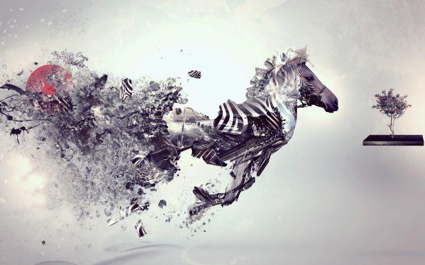 2560 × 1600 Zebra Abstract Graffiti Wallpaper