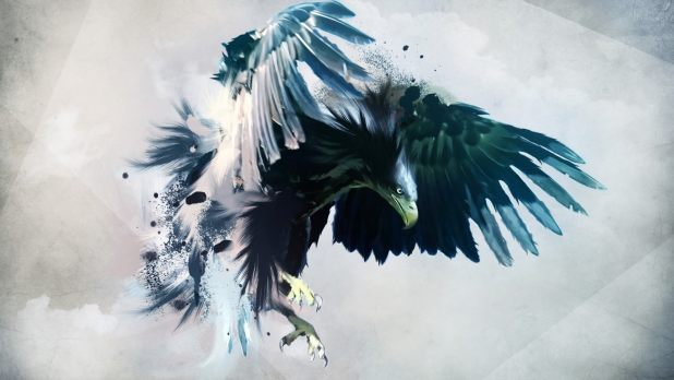 1920 × 1080 Beautiful Bird Desktop abstract