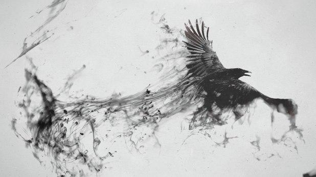 1920 × 1080 Bird White Abstract Wallpaper For Mobile