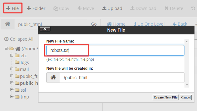 adding robots.txt to cpanel