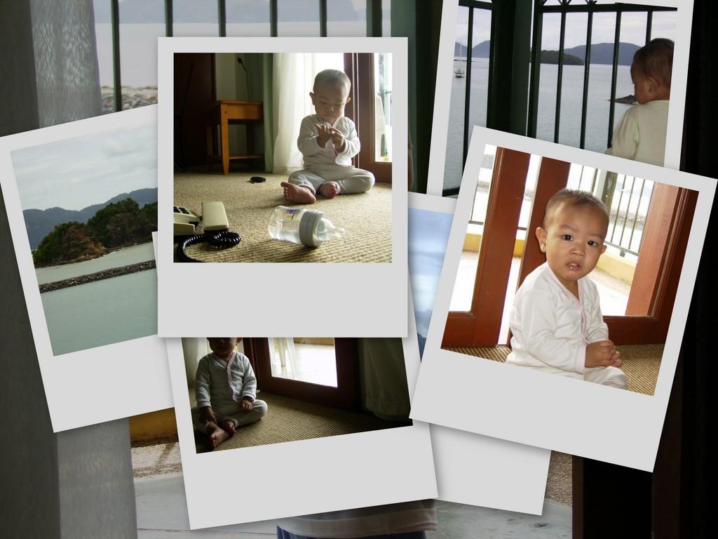 collage58.jpg
