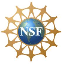 nsf_logo_large
